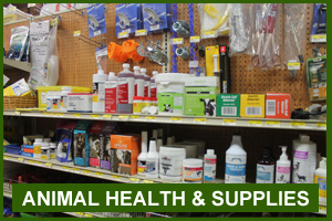 Animal Supplies